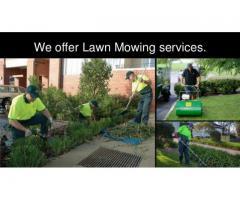 Lawn Mowing Craigieburn