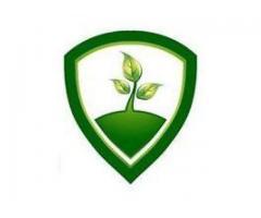 Financier Pty Ltd