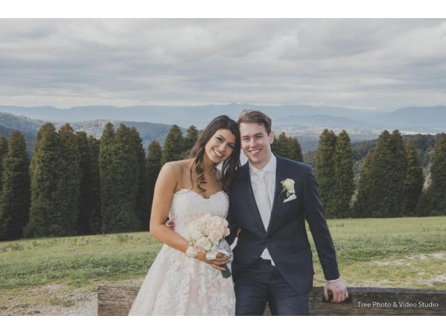 Tree Photo & Video Studio (Wedding Photographer & Videographer)