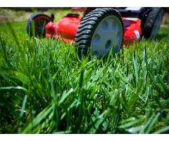 Lawn Mowing Aldinga