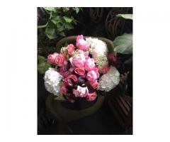 Flowerlane & Co