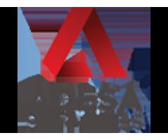 Adesa Services
